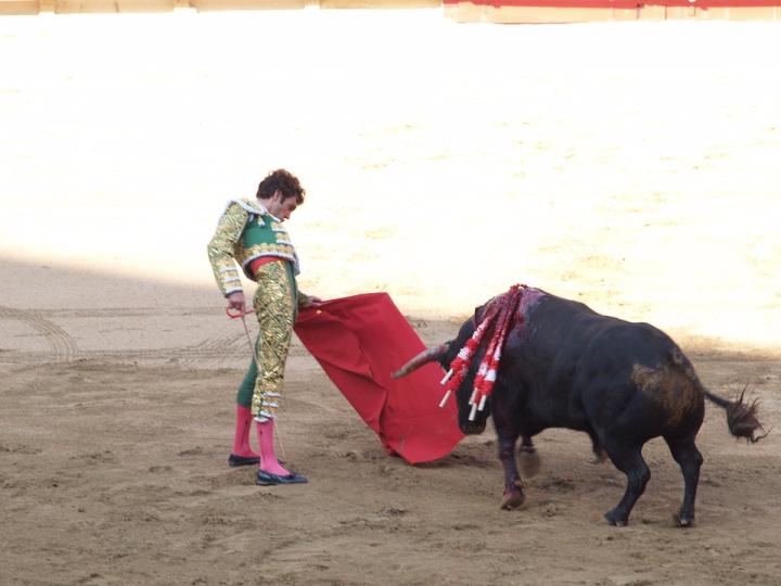 shon-stylish-bullfighting